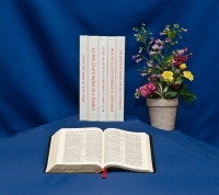 Biblical Studies Series class syllabi with a Bible open to Acts underneath and a flower pot to the right